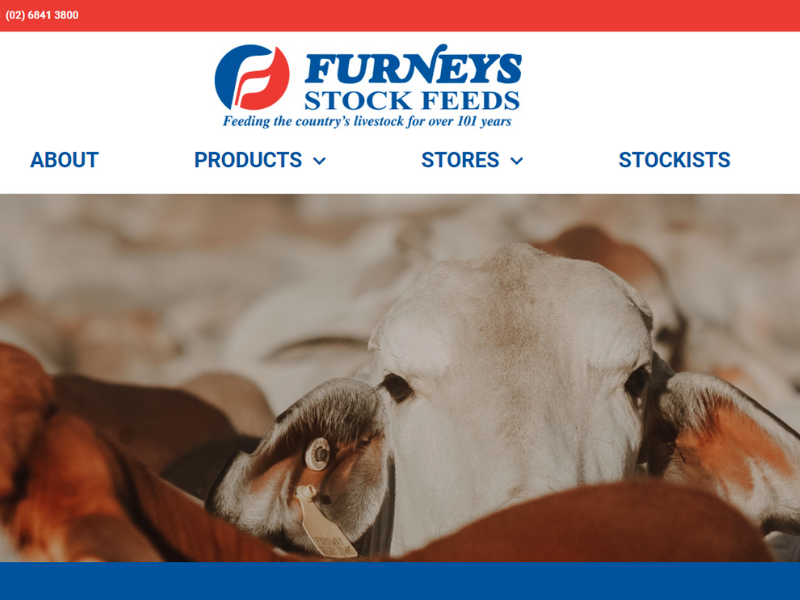 Furney Featured Images